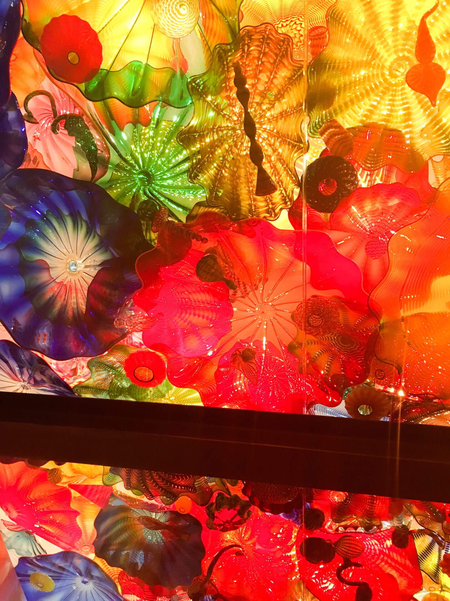 chihuly museum flowers