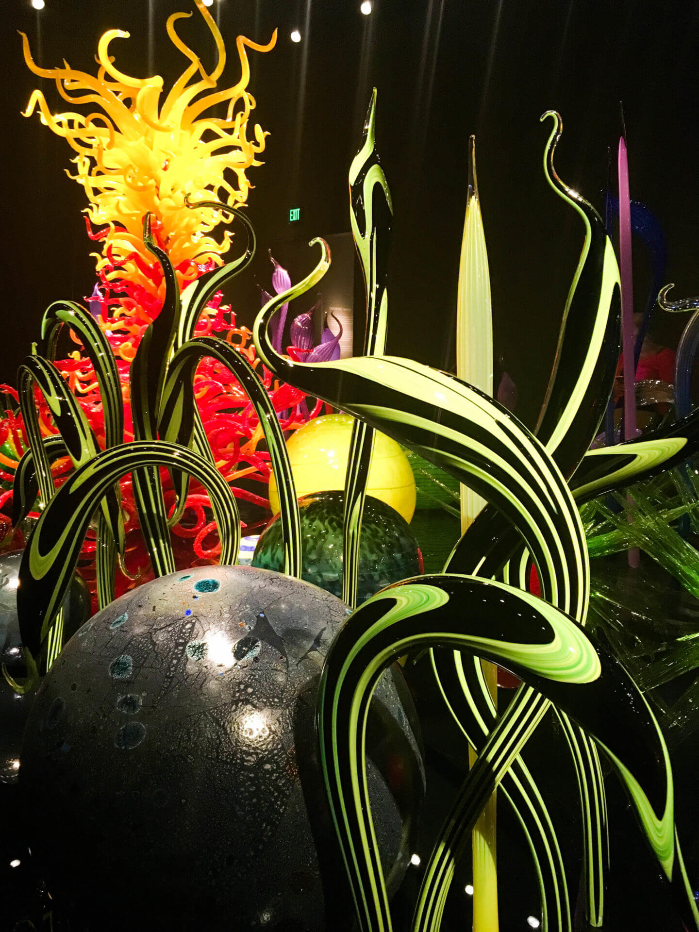 chihuly museum garden of glass